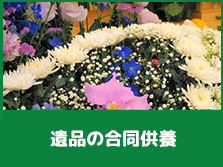 hikaku__service-item2