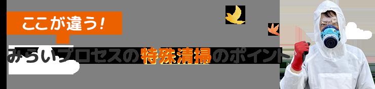 prosess-point__title-tokusyu